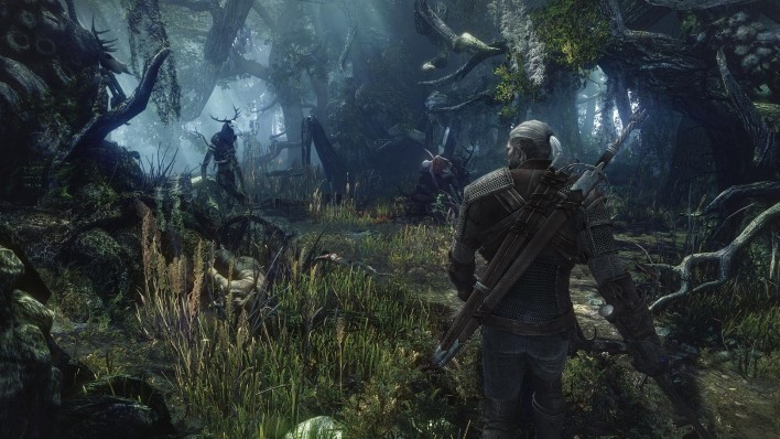 The_Witcher3_2